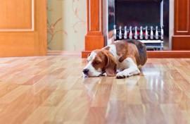 Consejos para insonorizar el suelo de tu vivienda